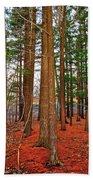 Colorful Carolina Forest Bath Towel