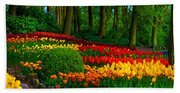 Colorful Corner Of The Keukenhof Garden 4. Tulips Display. Netherlands Bath Towel