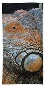 colorful Iguana Hand Towel