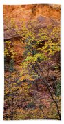 Colorful Leaves On A Tree Bath Towel