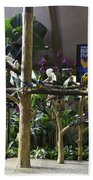 Colorful Macaws And Other Small Birds On Trees At An Exhibit Bath Towel