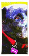 Colorful Old Dog Bath Towel