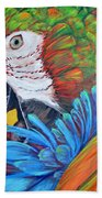 Colorful Parrot Hand Towel
