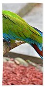 Colorful Parrot Bath Towel