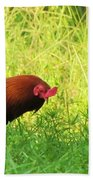 Colorful Rooster Hand Towel