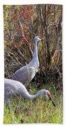 Colorful Sandhill Crane Collage Bath Towel