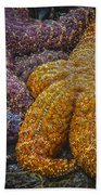 Colorful Starfish Bath Towel
