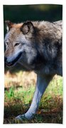 Colorful Wolf Bath Towel