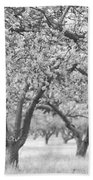 Colorless Cherry Blossoms Bath Towel