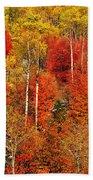 Colors Of Autumn Bath Towel