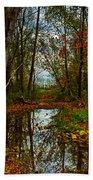 Colors Of Fall Bath Towel