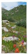 Colors Of The Rainbow - Colorado Mountain Summer Bath Towel