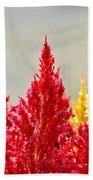 Colourful Plants Bath Towel