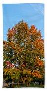 Colours Of Autumn Bath Towel