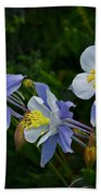 Columbines Bath Towel