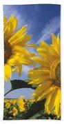 Common Sunflower Field Bath Towel