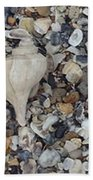 Conch Among A Sea Of Shells Bath Towel