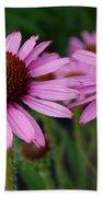 Coneflowers - Echinacea Purpurea Bath Towel