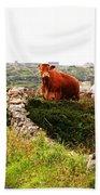 Connemara Cow Bath Towel