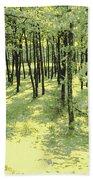 Copse Of Trees Sunlight Bath Towel