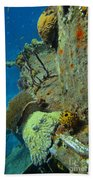 Coral Growth On A Ship Wreck Bath Towel