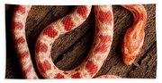 Corn Snake P. Guttatus On Tree Bark Bath Towel