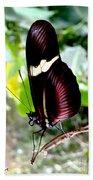 Costa Rican False Postman Butterfly Bath Towel