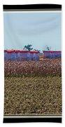 Cotton Harvest Bath Towel