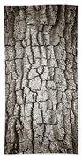 Cottonwood Bark 1 Bath Towel