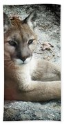 Cougar Country Hand Towel
