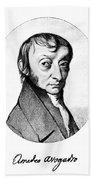 Count Amedeo Avogadro (1776-1856) Bath Towel