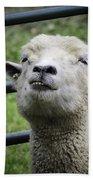 Counting Sheep Bath Towel