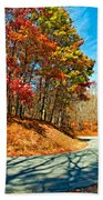 Country Curves And Vultures Paint Bath Towel