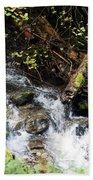 Covell Creek 4 Bath Towel