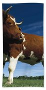Cow Standing In Field Germany Bath Towel