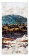 Crabby Crab Bath Towel