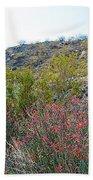 Creosote And Chuparosa On Henderson Trail In Santa Rosa-san Jacinto Nmon-ca Bath Towel