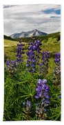 Crested Butte Lupines Bath Towel