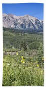 Crested Butte Scenery Hand Towel
