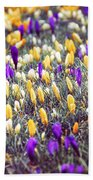 Crocus Field Bath Towel