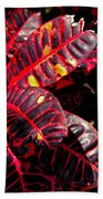 Croton Leaves In Black And Red Bath Towel
