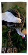 Crowned Crane Bath Towel