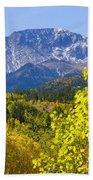 Crystal Creek Autumn Bath Towel