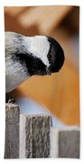 Curious Chickadee Bath Towel