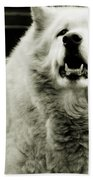 Curious Wolf Breed Bath Towel