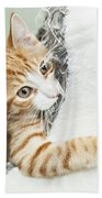 Cute Ginger Kitten In Igloo Bath Towel