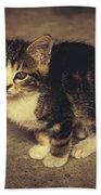 Cute Kitten Bath Towel