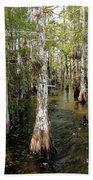 Cypres Swamp-1 Bath Towel