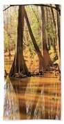 Cypress In The Swamp Bath Towel