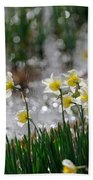 Daffodils On The Shore Bath Towel